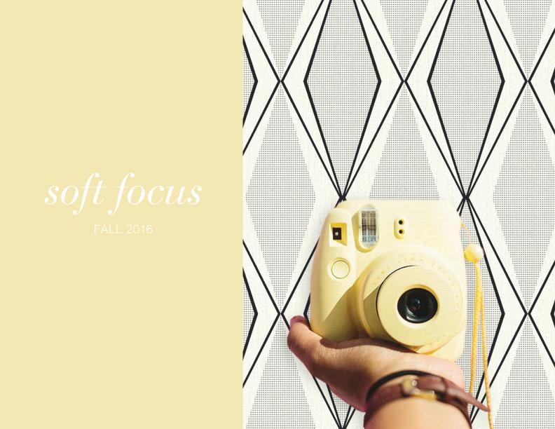 soft-focus-main